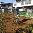 植栽工事を行っています。