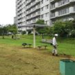 マンションの除草作業を行っています。